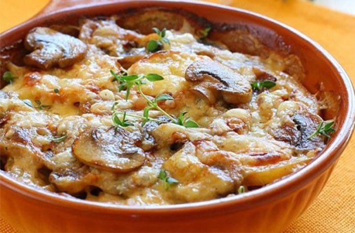 Gratin de pommes de terre, champignons et poulet